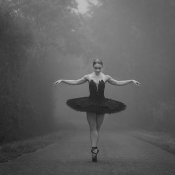Ballerinaprojekt Flensburg